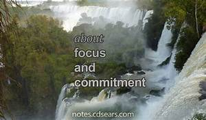 Focus and Commitment - My Notes