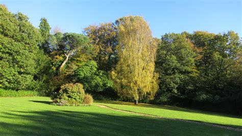 garden trees kelsey park derrickjknight