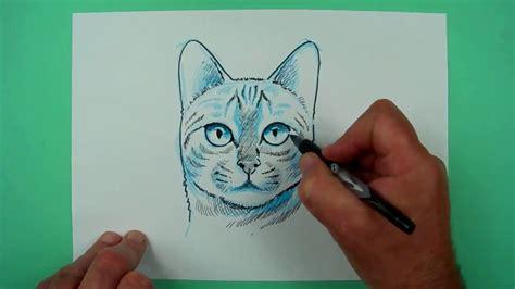 wie zeichnet man einen katzenkopf zeichnen fuer kinder