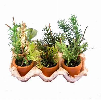 Plants Herb Artificial Garden Mini Potted Greenery