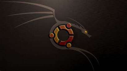Linux Kali Dragon Desktop Ubuntu Wallpapersafari