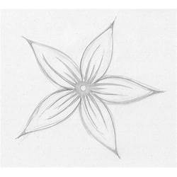 Small Flower Drawing Images