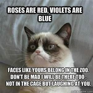 Grumpy Cat | Grumpy Cat Part 16 | funny | Pinterest | Cats ...