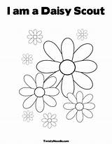 Coloring Scout Daisy Scouts Pages Colouring Law Flower Petal Printable Petals Daisies Template Printables Cute Print Lupe Sheet Sheets Coloringhome sketch template