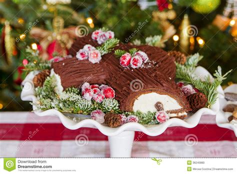 buche de noel cake stock photo image of display hungry 36245880