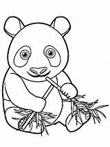 Panda Bamboo Coloring Eats Unicorn 1001coloring Panada Total Nice sketch template
