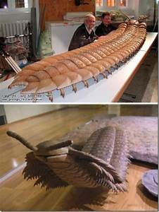 8 Giant Prehistoric Bugs That Totally Would Ruin Your ...