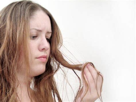 tipps für kaputte haare kaputtes haar wieder gesund pflegen hausmittel und tipps health and fitness kaputte haare