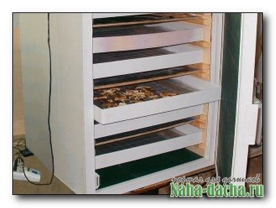 Ремонт электросушилок для овощей своими руками — Все про огород