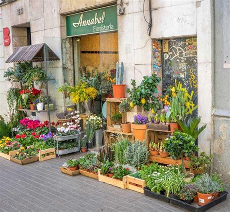 negozi di fiori aprire un negozio di fiori e piante fioreria
