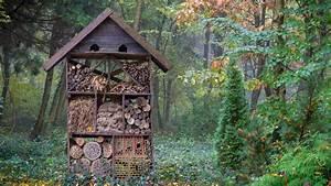 Abri à Insectes : abri insectes utilit et choix d 39 un abri insectes ~ Premium-room.com Idées de Décoration
