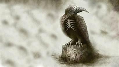 Bird Creepy Raven Drawing Dark Skeleton Gothic