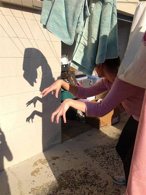 shadows     story