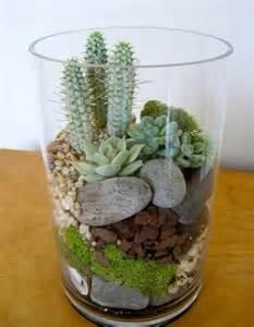 Idea Succulent Terrarium Plant