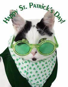88 best images about St.Patrick's Cats on Pinterest ...