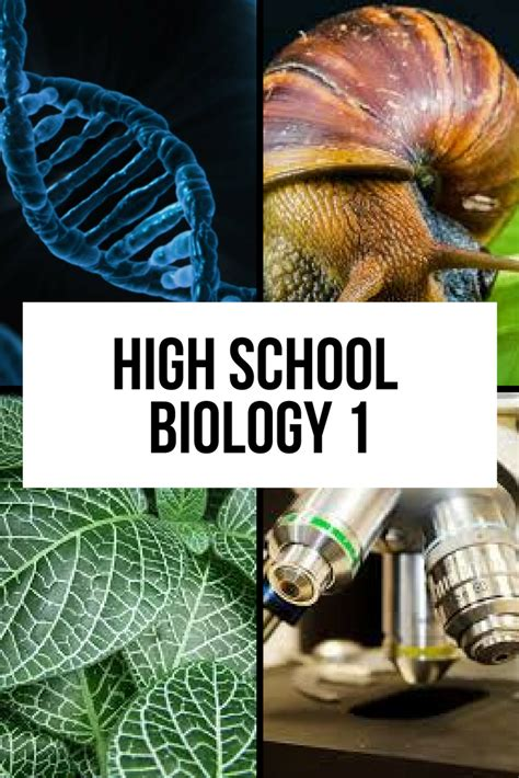 Biology 1   FundaFunda Academy