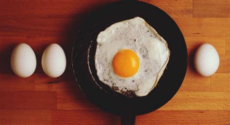 comment cuisiner les oeufs cuisine comment bien choisir ses œufs et les cuisiner