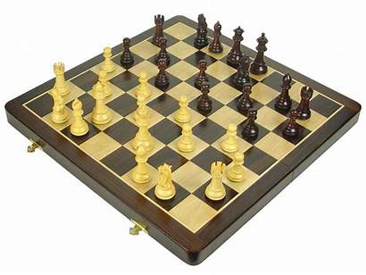 Chess Wooden Knight Royal Premier Staunton Rosewood
