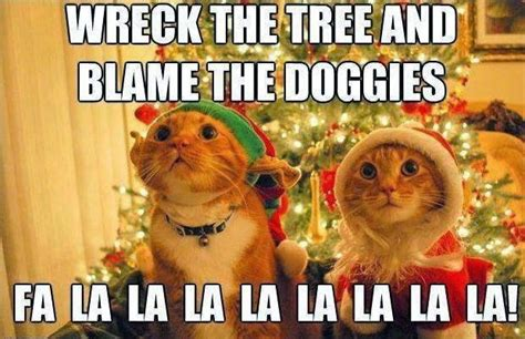 Cat Christmas Tree Meme - snippits and snappits alternative saturday cartoons december 20 2014