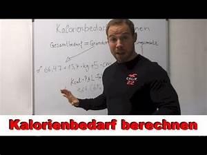 Kalorienbedarf Muskelaufbau Berechnen : related video igr3lsr3wau ~ Themetempest.com Abrechnung
