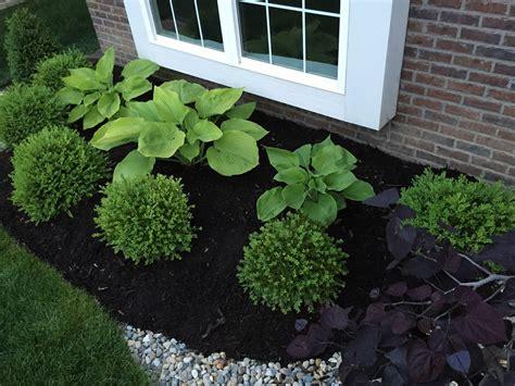 Gartengestaltung Mit Buchsbaum by Hosta Hail Damage Backyard Neophyte Landscaping