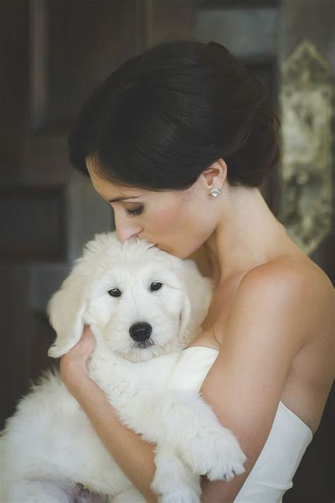 An Adorably Sweet Puppy And One Happy Couple At Their