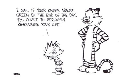 """Calvin & Hobbes """"i Say, If Your Knees Aren't Green By The"""