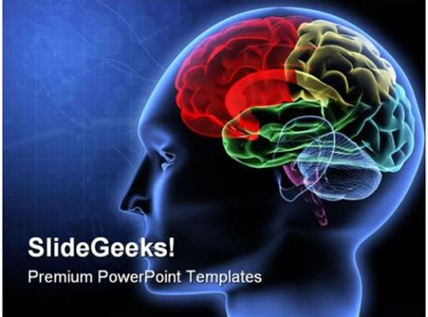 brain science powerpoint template  graphics