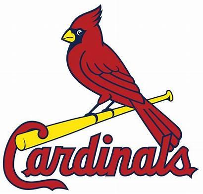 Cardinals Louis St Wikipedia Svg Wiki