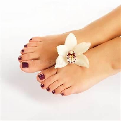 Pedicure Feet Spa Female Beauty Procedure Background