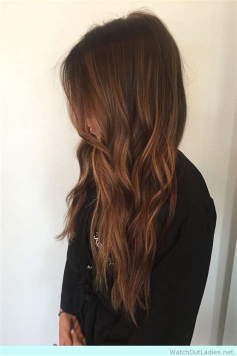 warm rich brown  golden highlights amazing hair color