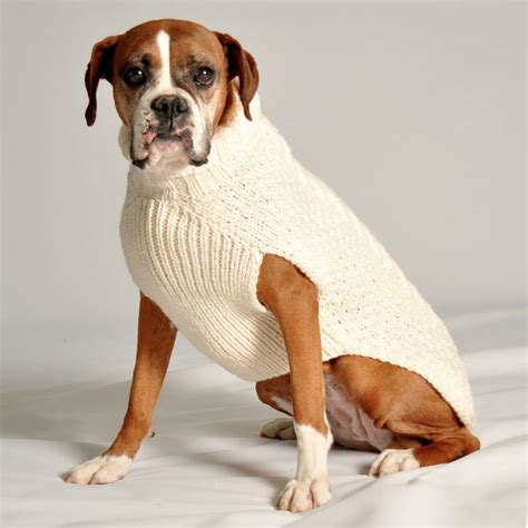 sweaters for boxer dogs sweater puppies wallpaper