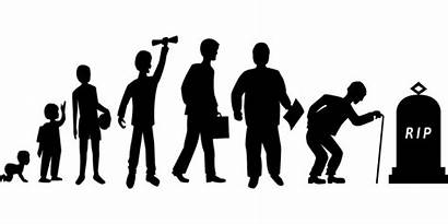 Human Growth Development Edu Adult Openclipart Cc0