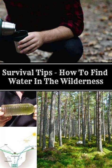 survival tips   find water   wilderness home