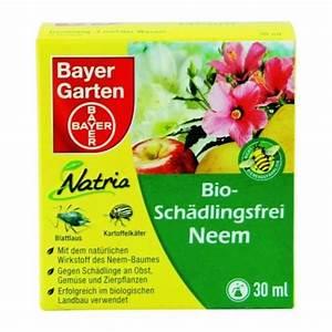 Neem Gegen Blattläuse : bayer garten bio sch dlingsfrei neem 30 ml flasche ~ Watch28wear.com Haus und Dekorationen
