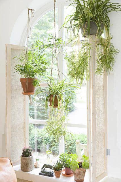 Window Plants by Image Via Decordemon Window Gardens Window Plants