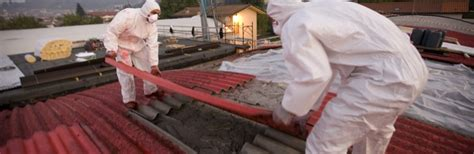asbestos removal  home       home