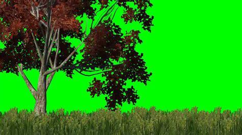 meadow  red tree   wind green screen effects