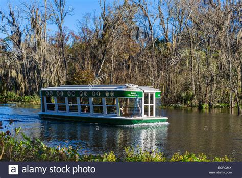 Silver Springs Glass Bottom Boat by Glass Bottom Boat Trip On The Silver River In Silver