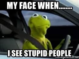Kermit Meme My Face When - my face when i see stupid people kermit the frog in car meme generator