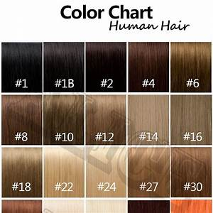 Light Color Chart Human Hair Color Chart Extensions 31 Colors Hair Colour