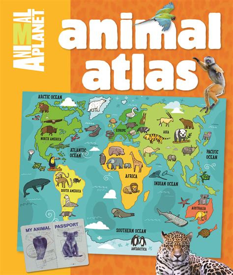 animal planet animal atlas discovery kids