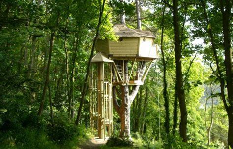 chambre d h es etretat cabane dans les arbres les cabanes de cécile à etretat