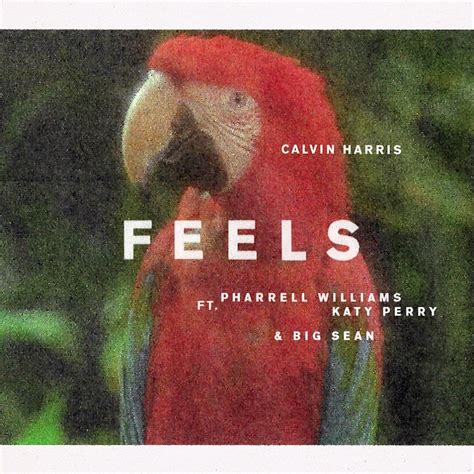 "Calvin Harris Edita ""feels"" Ft Pharrell Williams, Katy"