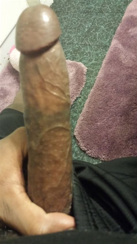 Young Hard Cock Photo Album By Cumsquirter19