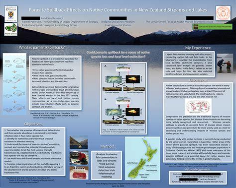poster samples undergraduate research texas undergraduate studies