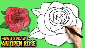 How To Draw An Open Rose Easy Step By Drawing Tuturial