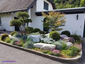 Pflanzen Für Nordseite : vorgarten nordseite gestalten ~ Frokenaadalensverden.com Haus und Dekorationen