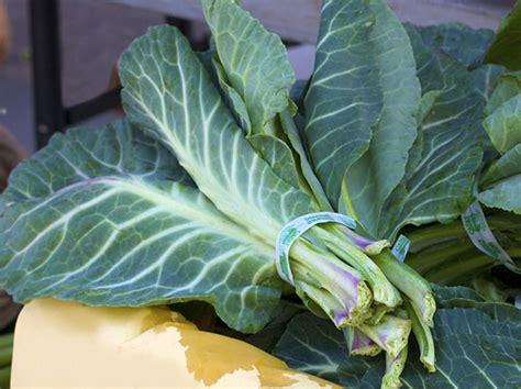 Eat To Beat Collard Greens