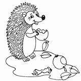 Hedgehog Coloring Hedgehogs Coloringpages1001 sketch template